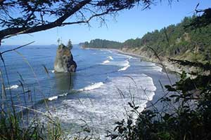 Olympic National Park Coastline