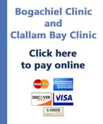 Bogachiel and Clallam Bay pay online button
